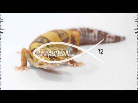 Oliver Heldens X Becky Hill - Gecko (Overdrive) (Blinders Bootleg)