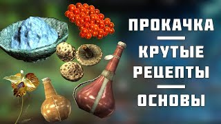 ★Skyrim БЫСТРАЯ прокачка Алхимии! Основы и дорогие рецепты!★