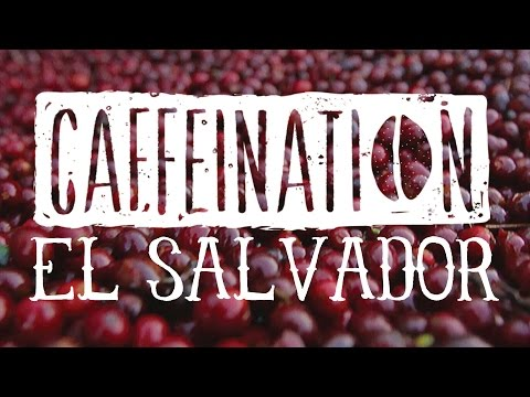 CAFFEINATION El Salvador