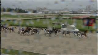 Vidéo de la course PMU PREMI NATHAN TWIST