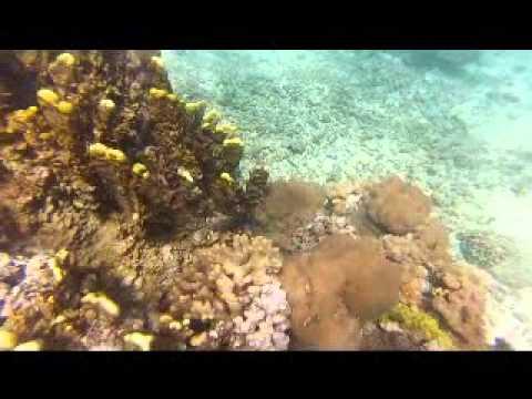 vanuatu island life from Port Patrick village Aneityum island