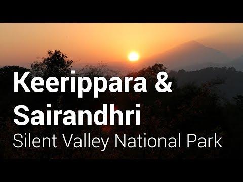 Keerippara Camping & Sairandhri Trip
