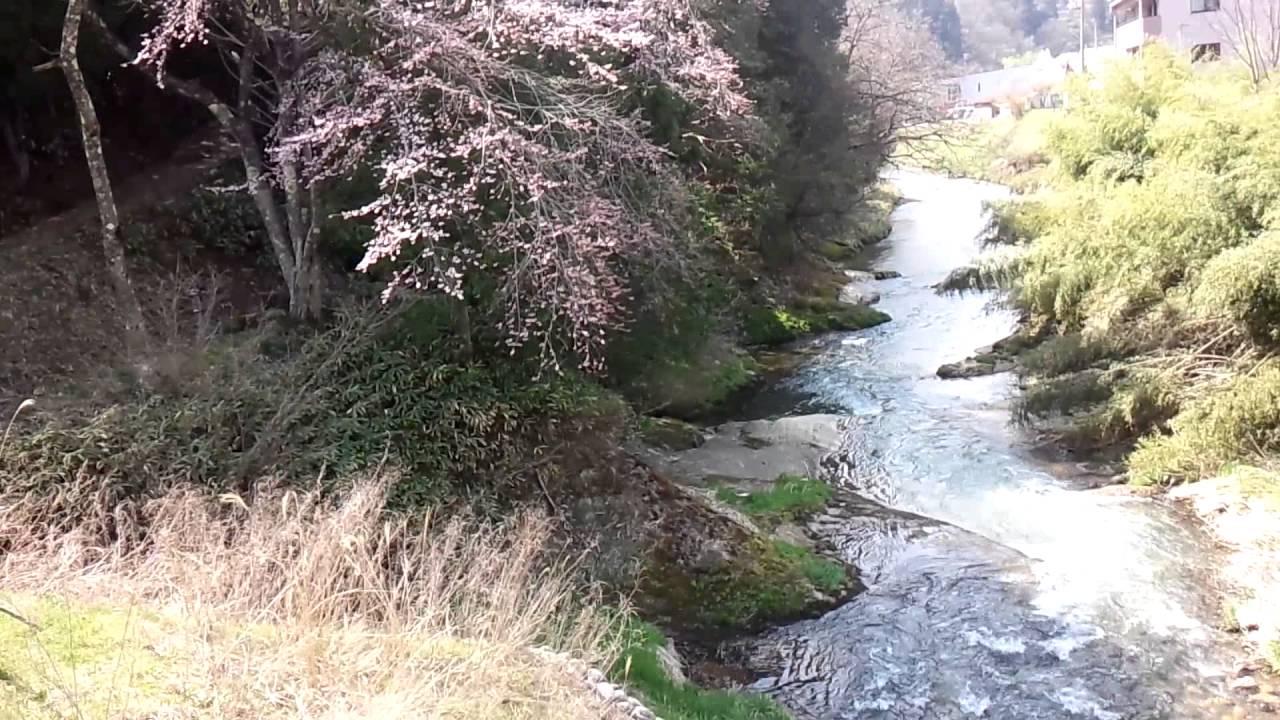 大八賀川の曙橋から - YouTube
