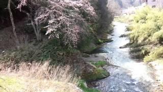 大八賀川の曙橋から
