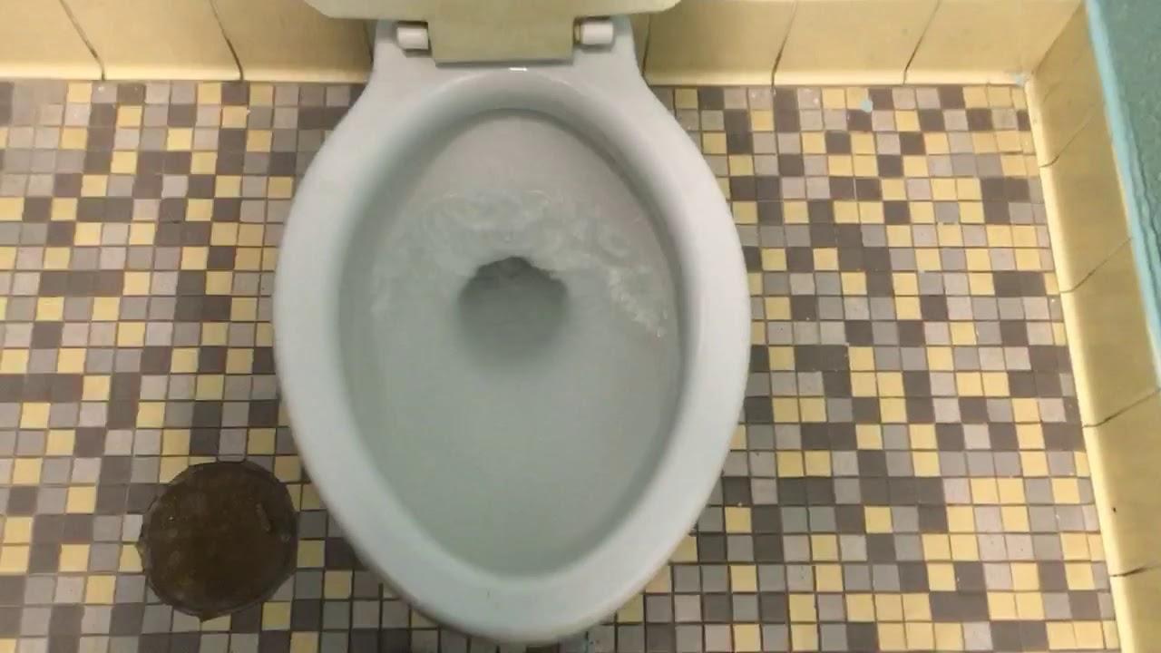 See Great 1950s Bathroom Fixtures Web @house2homegoods.net