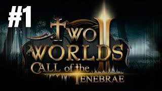 two Worlds II Call of the Tenebrae Gameplay Walkthrough Part 1 - No Commentary (PC)
