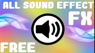 JOHN CENA INTRO ! ● FREE SOUND EFFECT