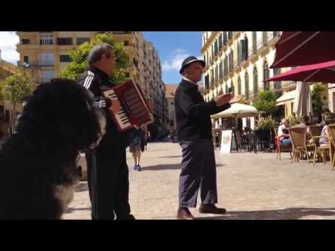 Some live music in Malaga