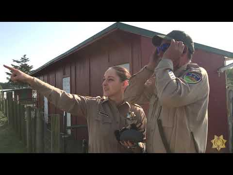 Jimmy Barrett - VIDEO: Humboldt Correctional Deputy sees color for the first time