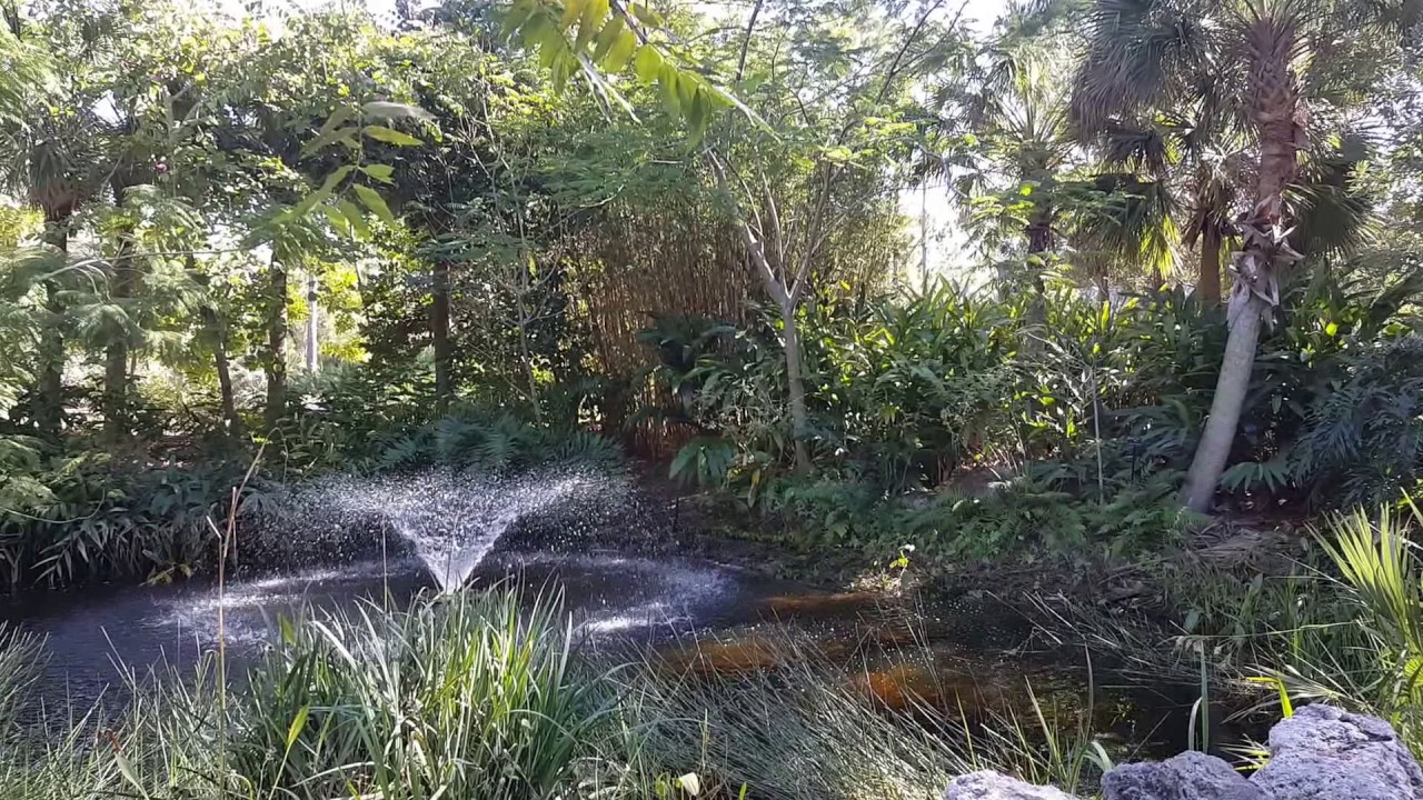 Finding Peace And Beauty At Florida Botanical Gardens In Largo, FL
