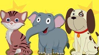 животных Звук песни | узнать животных | образовательная песня | Animal Sound Song | Animals For Kids