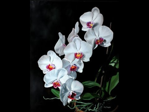 "Orchid Art, Painting Titled ""Stairway To Heaven"" And Others"