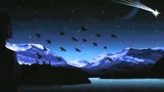 Un nuovo respiro di Graziano Lunardi - Video poesia Massimo Rotundo
