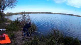 Рыбалка. Ловля карпа в Забирье.