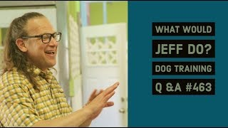 Dog growls when approached | Training a nervous dog | What Would Jeff Do? Dog Training Q & A #463