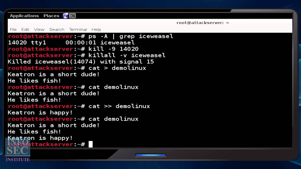 An Introduction to Linux Commands in Kali