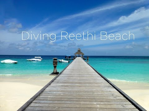 Diving at Reethi Beach, Baa Atoll, Maldives, September 2013, HD