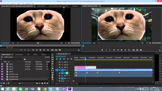 Adobe Premiere Pro CC Монтаж Для Начинающих. Экспресс Урок 2