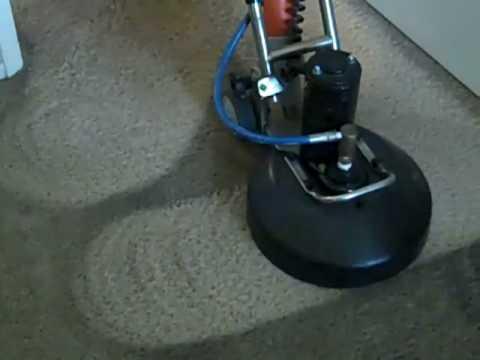 Cleaning Carpet Shamrock Style Youtube