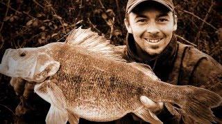 Крупный окунь на 5кг 960гр # Самая большая в мире пойманная Рыба