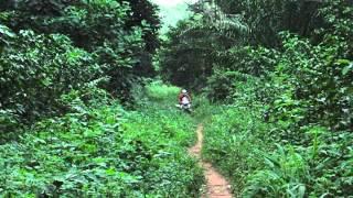 Road from Businga to Lisala thumbnail