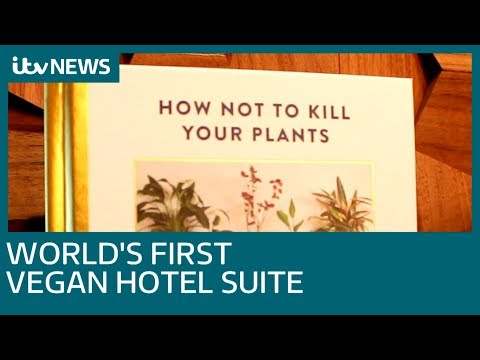 Step inside the world's first vegan hotel at Hilton London Bankside | ITV News