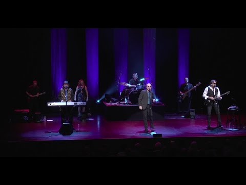 Night Fever - The Bee Gees Tribute