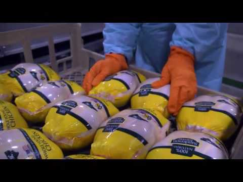 Dr. Phil Stayer - How We Grow Chickens at Sanderson Farms