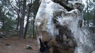 Retour aux sources (7A) in Fontainebleau Forest