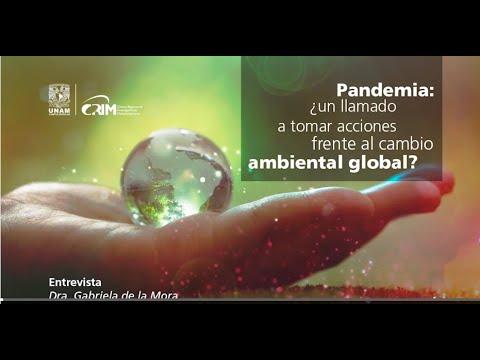 Pandemia ¿un llamado a tomar acciones frente al cambio ambiental global? [361]
