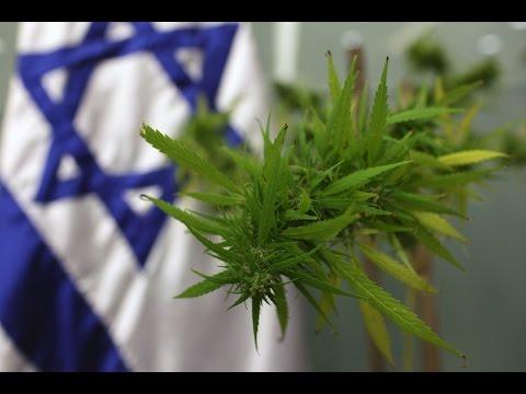 Israel's National Medical Cannabis program | Izraelský program léčby konopím | B. Wachtel