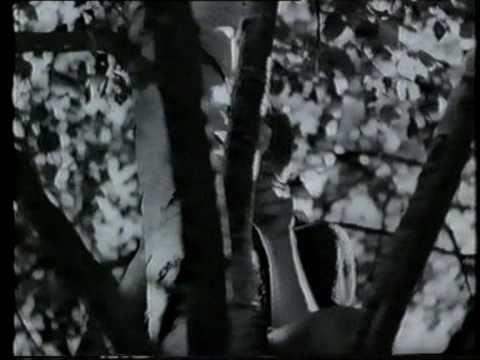 Mästerdetektiven Blomkvist 1947: Den Röda och Vita Rosen