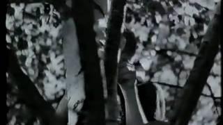 Vita rosen film