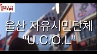 [맘쓰티비]울산 자유시민단체 U.C.O.L #시민단체 #울산시민단체 #UCOL #맘쓰티비