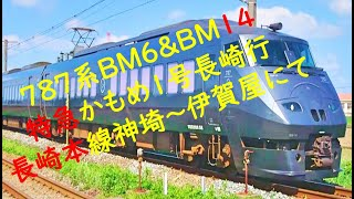 787系BM6&BM14 特急かもめ1号長崎行 長崎本線神埼~伊賀屋にて