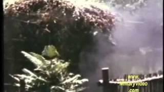 Marines Search & Destroy  Vietnam War