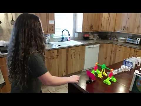 Emma Lee Armstrong Rube Goldberg Project