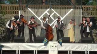 Festivāla Baltika 2012 noslēguma koncerts Madonā 9.07.2012 -00241.MTS