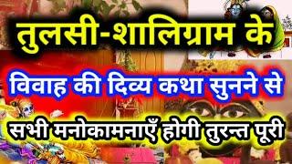 #Tulsi vivah:🌿तुलसी शालिग्राम के विवाह की दिव्य कथा सुनने मात्र से होगी सभी मनोकामनाएं तुरंत पूरी🌝