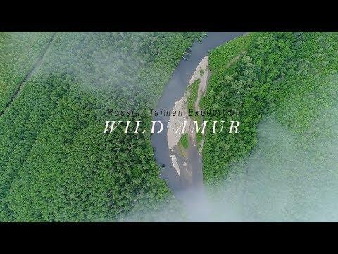 Russian  Taimen In Amur River  Trailer