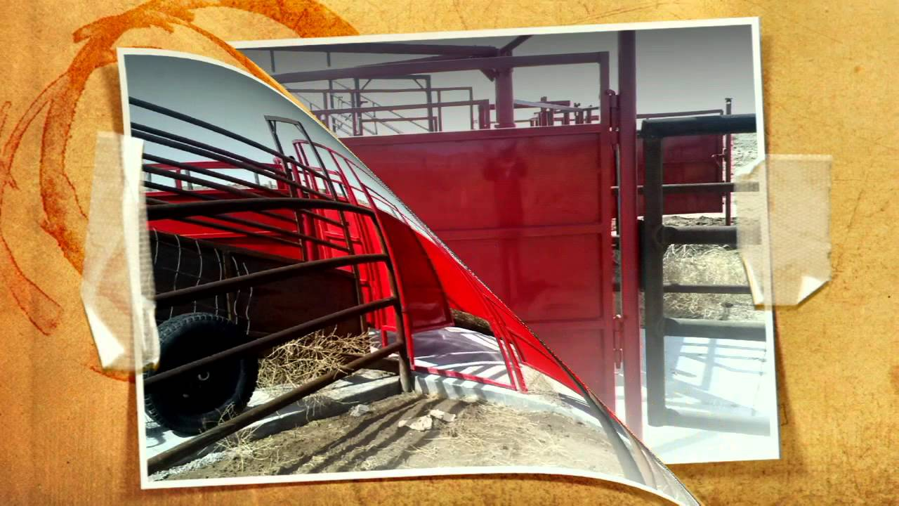 Cattle Tub And Alley Youtube