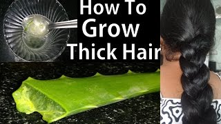 how to grow thick hair overnight | home remedies for hair growth faster, aloe vera for thicker hair