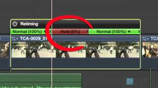 How To Create a Freezeframe in Final Cut Pro X Advanced