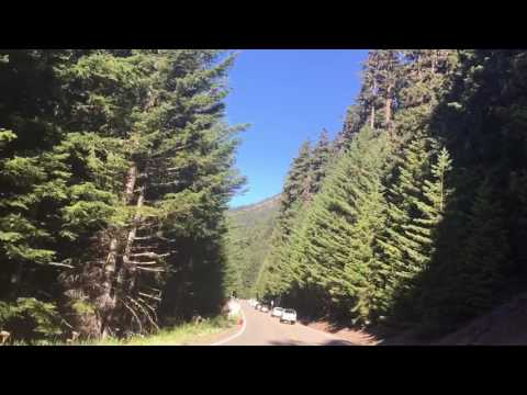 Driving in Olympic National Park