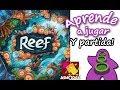 Vídeo: Reef