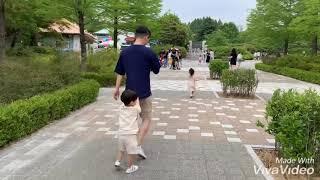 김밍밍 전주여행2탄 가족나들이 전주동물원 회전목마
