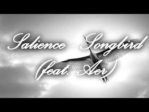 Salience - Songbird (feat. Aer) [Remix]