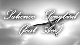 Salience - Songbird (feat. Aer) (Remix)