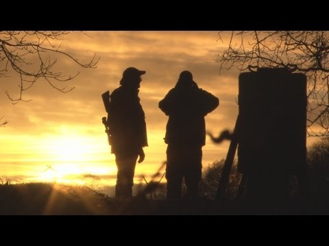 Fieldsports Britain - Night vision, quick duck and the Browning B725