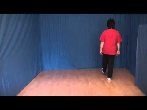 Line Dance deutsch San Antone